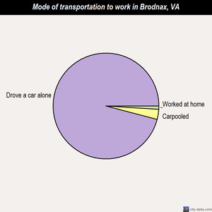 Brodnax mode of transportation to work chart