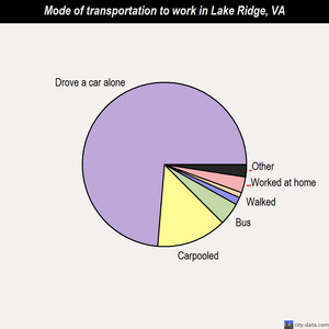 Lake Ridge mode of transportation to work chart