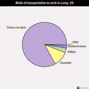 Luray mode of transportation to work chart