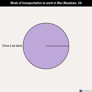 Max Meadows mode of transportation to work chart