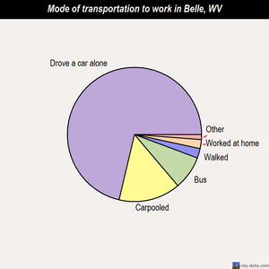Belle mode of transportation to work chart