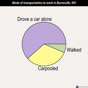 Burnsville mode of transportation to work chart