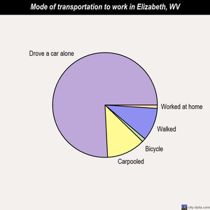 Elizabeth mode of transportation to work chart
