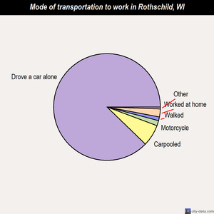 Rothschild mode of transportation to work chart