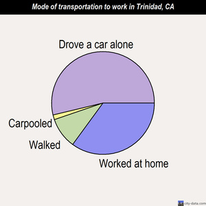Trinidad mode of transportation to work chart