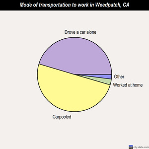 Weedpatch mode of transportation to work chart