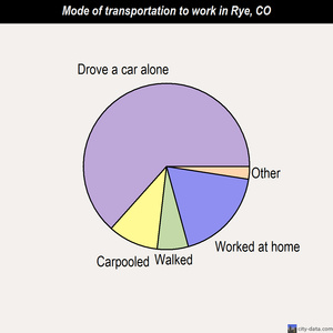 Rye mode of transportation to work chart