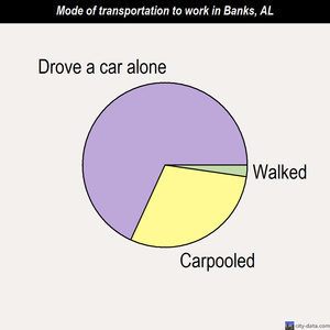 Banks mode of transportation to work chart