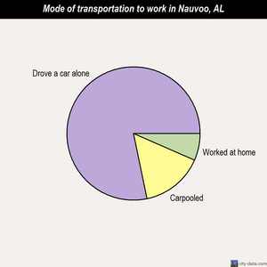 Nauvoo mode of transportation to work chart