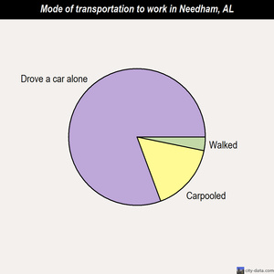 Needham mode of transportation to work chart