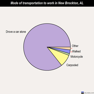 New Brockton mode of transportation to work chart