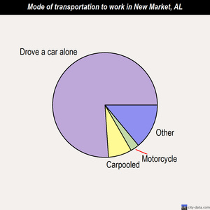 New Market mode of transportation to work chart