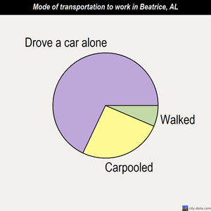 Beatrice mode of transportation to work chart