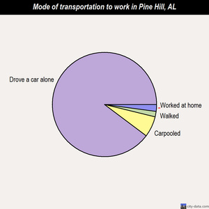 Pine Hill mode of transportation to work chart