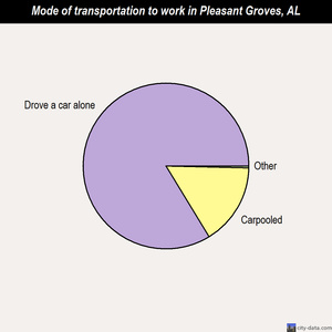 Pleasant Groves mode of transportation to work chart