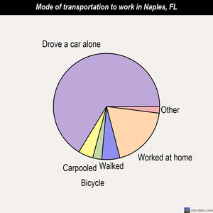 Naples mode of transportation to work chart