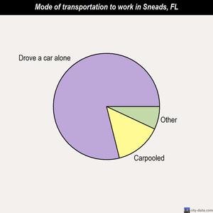 Sneads mode of transportation to work chart