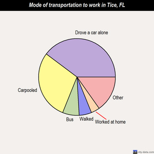 Tice mode of transportation to work chart