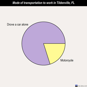Tildenville mode of transportation to work chart