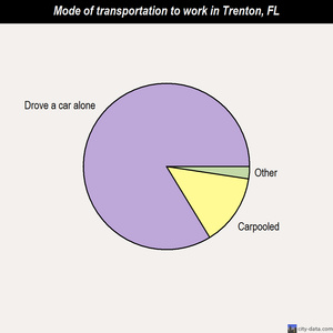 Trenton mode of transportation to work chart