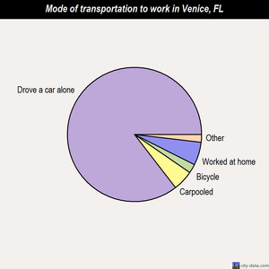 Venice mode of transportation to work chart