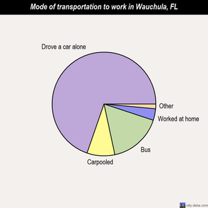 Wauchula mode of transportation to work chart