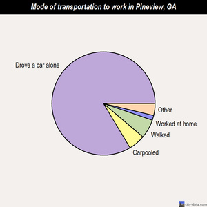 Pineview mode of transportation to work chart