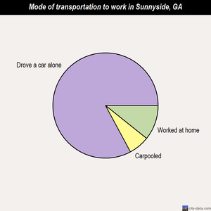 Sunnyside mode of transportation to work chart