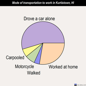 Kurtistown mode of transportation to work chart