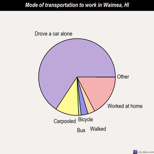 Waimea mode of transportation to work chart