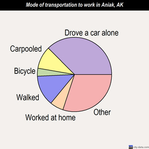 Aniak mode of transportation to work chart