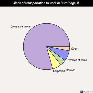 Burr Ridge mode of transportation to work chart