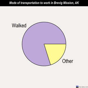 Brevig Mission mode of transportation to work chart
