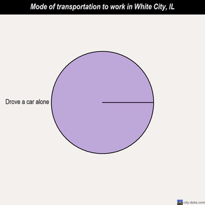 White City mode of transportation to work chart