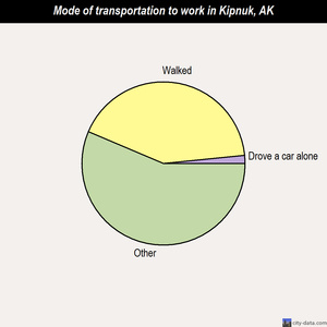 Kipnuk mode of transportation to work chart