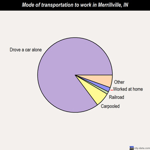 Merrillville mode of transportation to work chart
