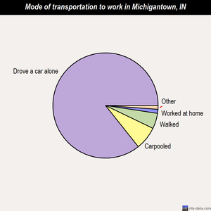 Michigantown mode of transportation to work chart