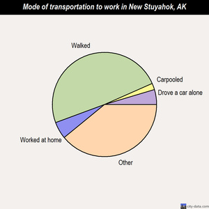 New Stuyahok mode of transportation to work chart