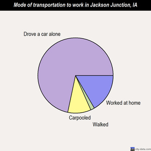Jackson Junction mode of transportation to work chart
