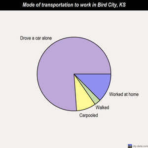 Bird City mode of transportation to work chart