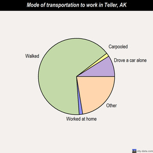 Teller mode of transportation to work chart