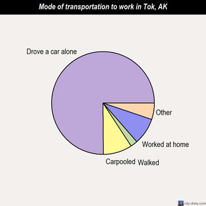 Tok mode of transportation to work chart