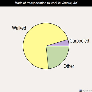Venetie mode of transportation to work chart