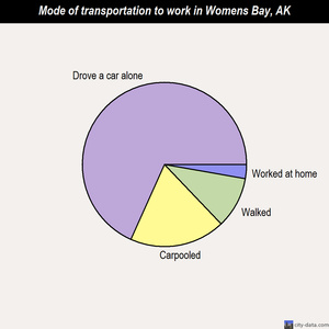 Womens Bay mode of transportation to work chart
