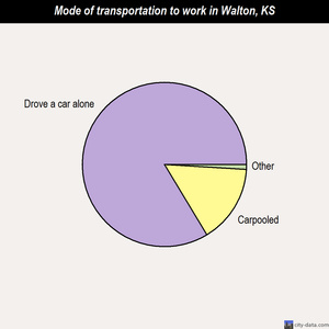 Walton mode of transportation to work chart