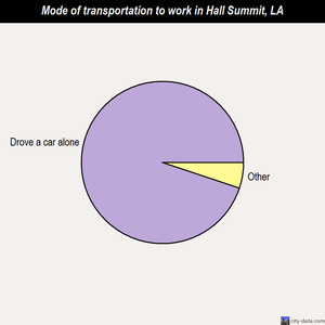 Hall Summit mode of transportation to work chart