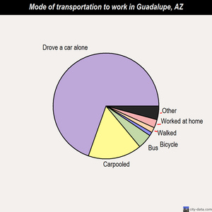 Guadalupe mode of transportation to work chart