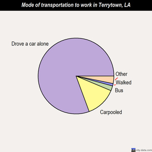 Terrytown mode of transportation to work chart