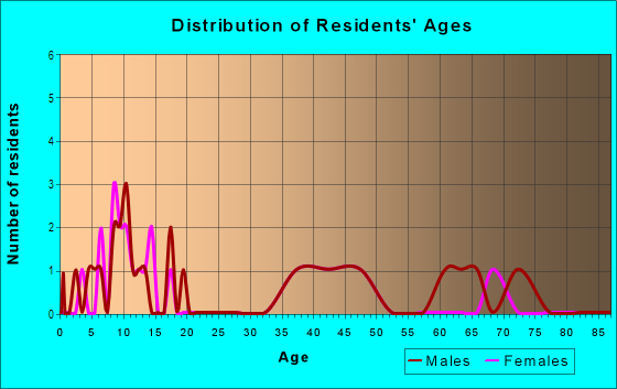 Age and Sex of Residents in Silver Lake Hill in Leesburg, FL