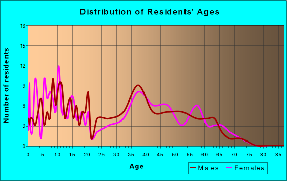 Age and Sex of Residents in Town Center in Woodridge, IL